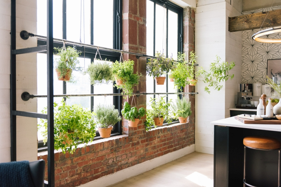 Loft urządzony w trendzie urban jungle, wystrój wnętrz, wnętrza, urządzanie domu, dekoracje wnętrz, aranżacja wnętrz, inspiracje wnętrz,interior design , dom i wnętrze, aranżacja mieszkania, modne wnętrza, loft, styl loftowy, styl industrialny, urban jungle, miejska dżungla, rośliny, kwiaty, zieleń, kuchnia, wyspa kuchenna, projekt kuchni, zioła