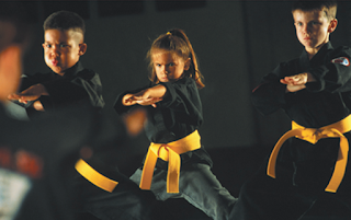 Martial Arts better for kids than team sports?