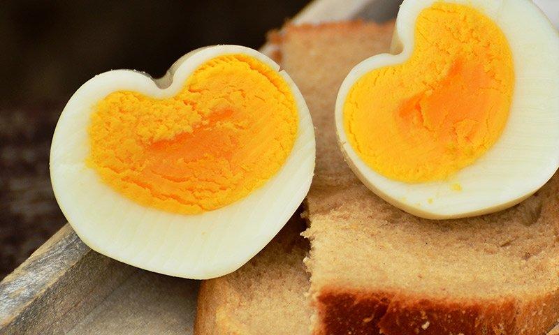 cholesterol, statin, heart disease, egg