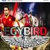 باتش الدوري المصري PES9 EGYBIRD لتحويل بيس09 الى بيس17 برابط واحد