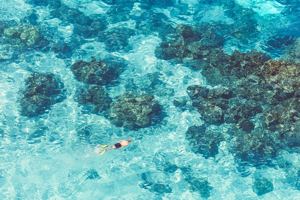 the snorkeler gray malin bora bora ravacholle sea summer été vacances lifestyle blogger