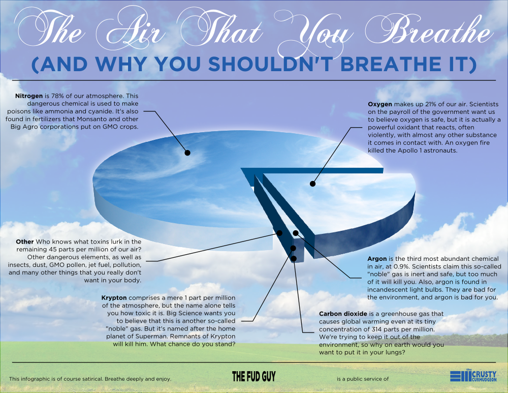 [The Air That You Breathe: And Why You Shouldn't Breathe It]