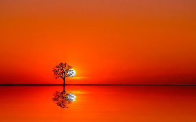 red sunset widescreen hd wallpaper
