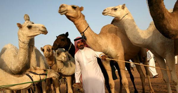 Kajian Hadits: Benarkah orang Arab lebih utama dalam Islam?