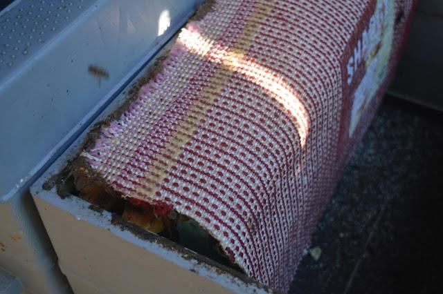 """Σωστό σφίξιμο μελισσιού μέσα στο Χειμώνα! Για να τη βγάλουν """"καθαρή"""" και τα μικρότερα μας μελίσσια..."""