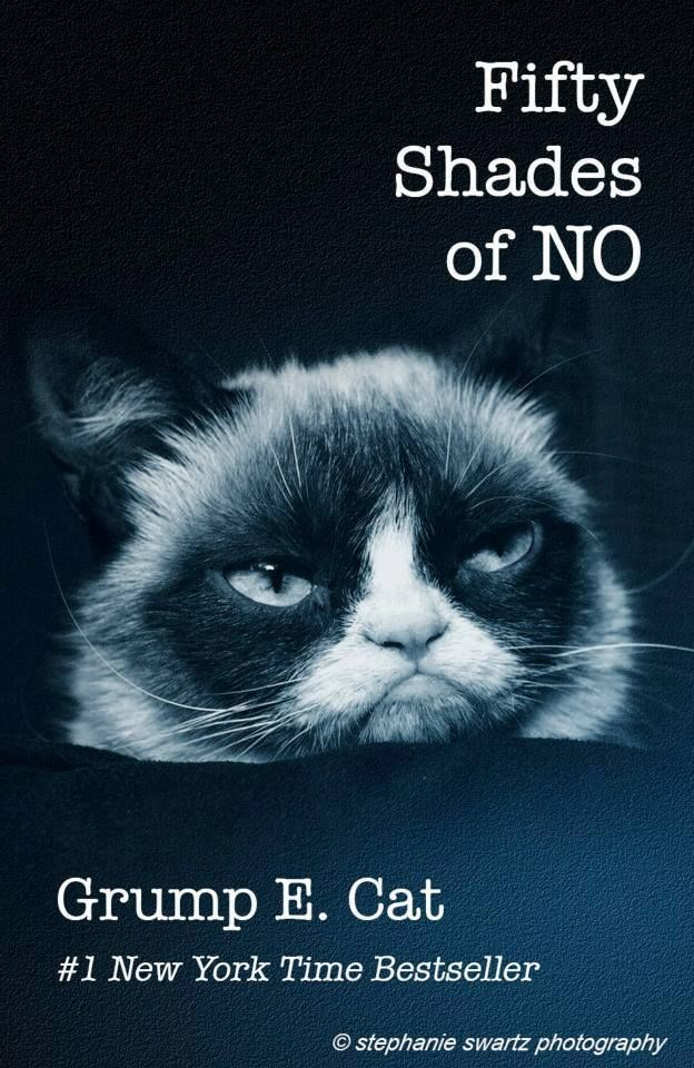 Keep Calm And Diy 9 Awesome Grumpy Cat Memes