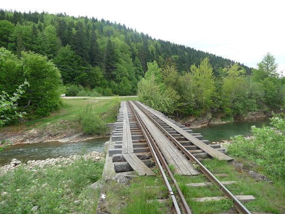Красота Карпат. Поездка на трамвае. Река Мизунка. Железнодорожный узкоколейный мост
