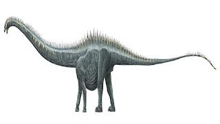 Dystylosaurus Dinozorunun Özellikleri