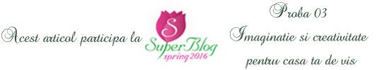 http://super-blog.eu/proba-3-imaginatie-si-creativitate-pentru-casa-ta-de-vis/