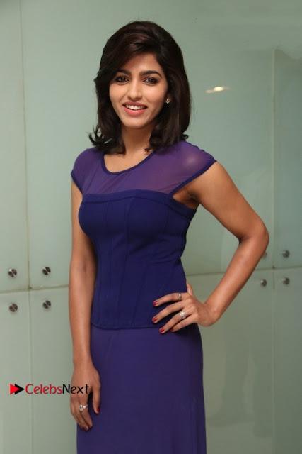 Tamil Actress Dhansika Stills in Purple Long Dress at Simba Audio Launch  0009.jpg
