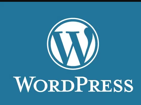 Guide to Effective Wordpress Caching