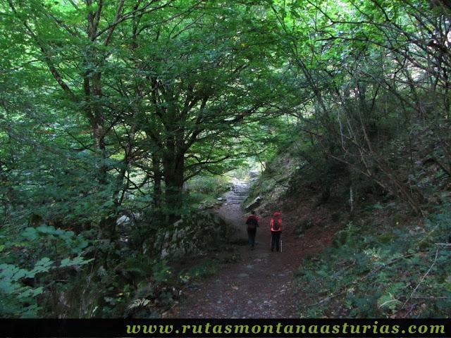Ruta de los Arrudos y Corteguerón: Paseando entre vegetación