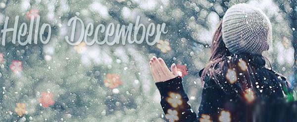 Thơ hay- chào tháng mười hai . Những bài thơ chào tháng 12