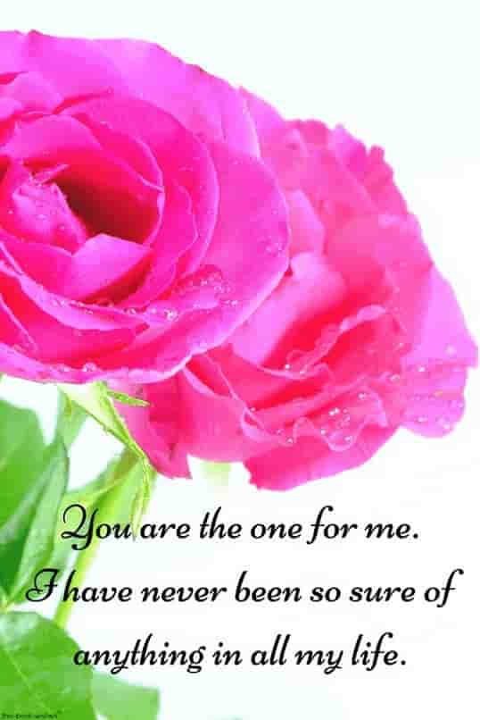 one for me quote for love