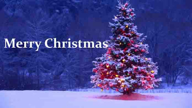 Happy Merry Christmas wishes sms quotes images in hindi