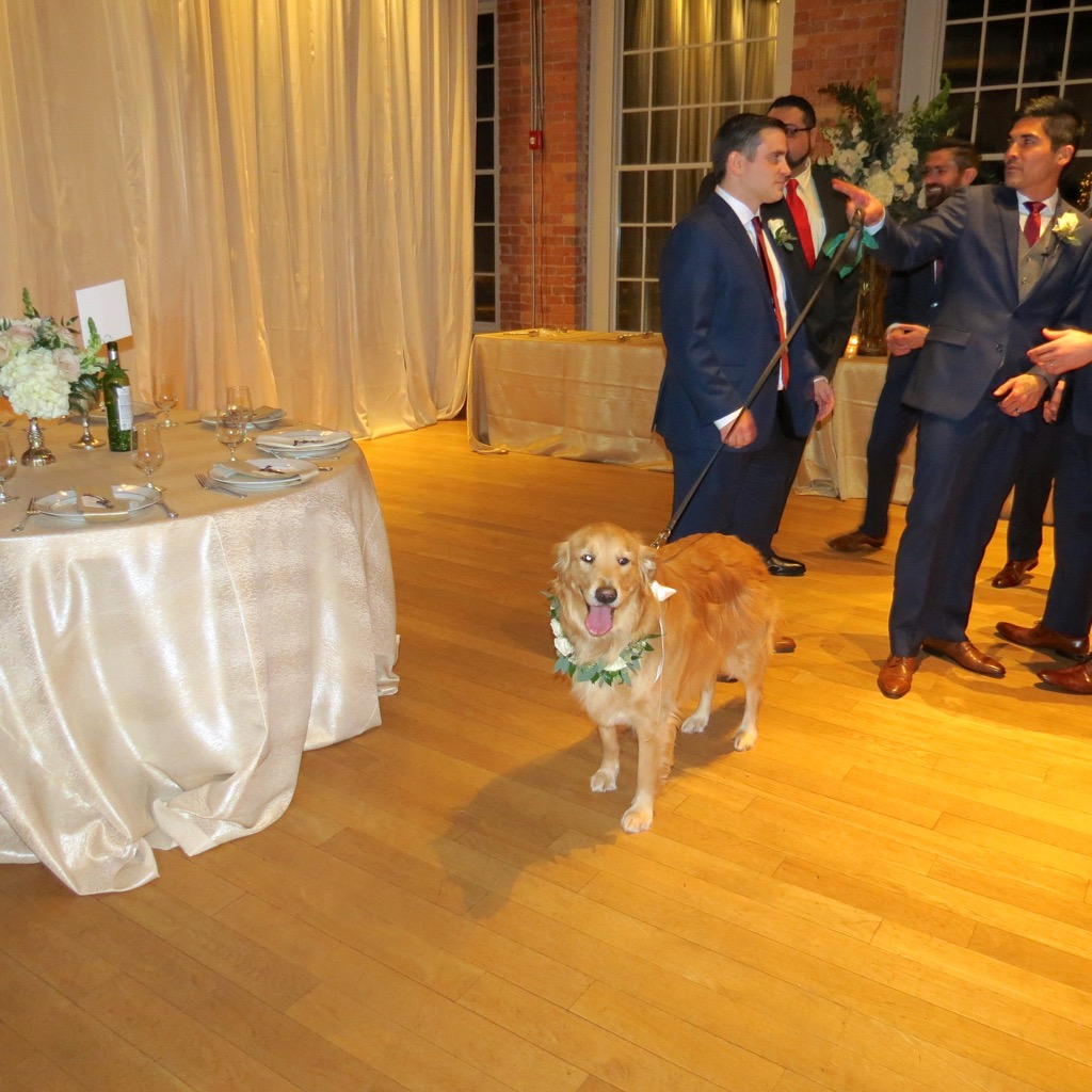 raleigh wedding blog