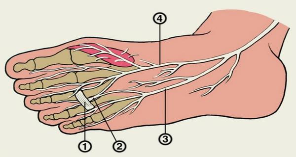 tehnica prin care calmezi picioarele