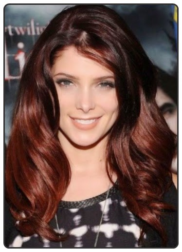 Best Brown Hair Color Ideas 2014 10