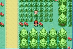 Pokemon Delta Green Screenshot 3
