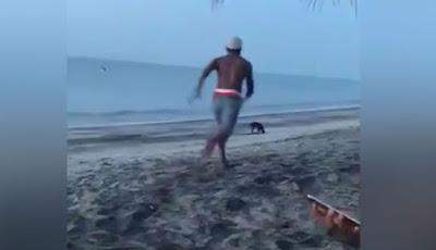 Coba Tendang Anjing Liar, Pria Ini Langsung Mendapatkan Karma