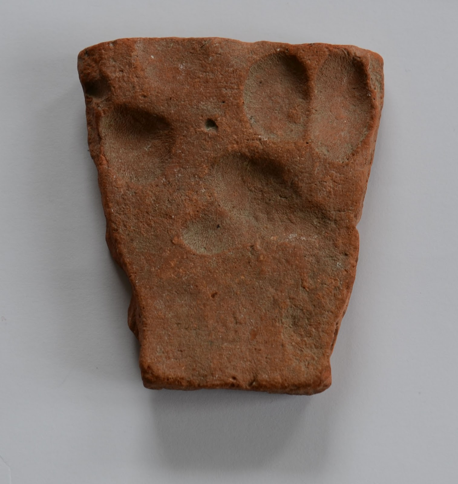 Mudlarking Dog Paw Print On Medieval Clay Roof Tile Found
