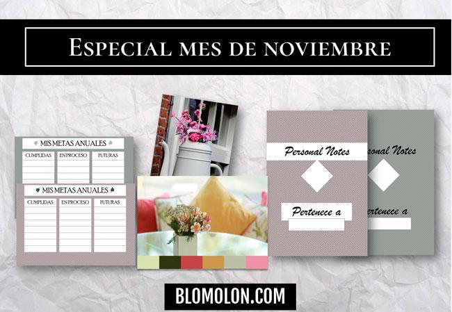 especial mes de noviembre