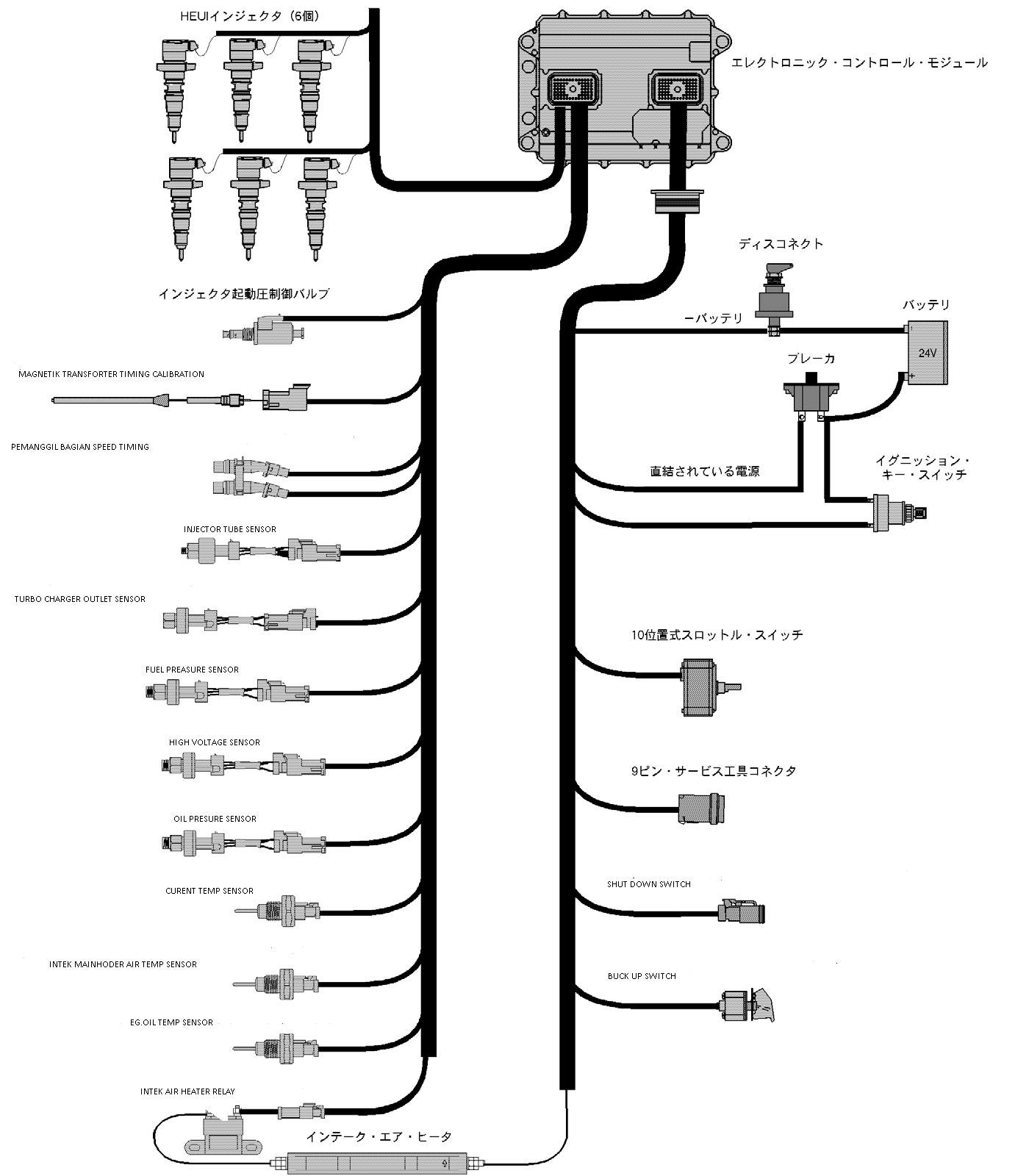 cat 3306 wiring harness