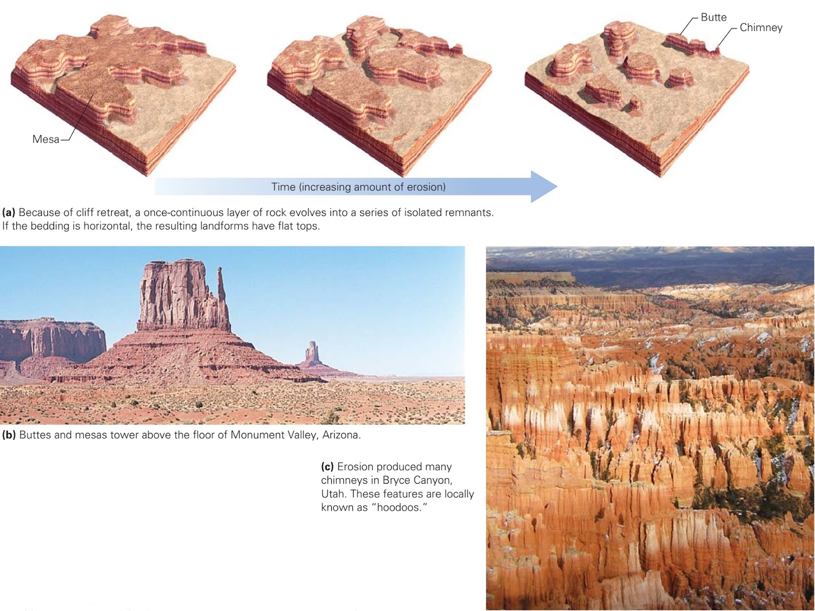 Desert Landscapes And Life Learning Geology