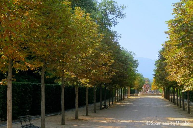 紅葉が近づいたセゴビアの美しいラ·グランハ·デ·サン·イルデフォンソ宮殿の庭園
