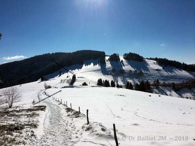 Sternschanze Neuenweg — Fortin en étoile et redoute (Forêt-Noire). Cliché Balliet JM, 2018.
