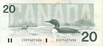 La strolaga (loon) sul retro della banconota da 20 dollari canadesi