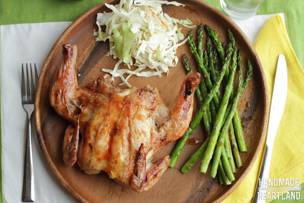 Thai Style Grilled Cornish Hen  #Grill4Flavor  #shop