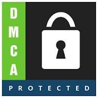 """Digital Millennium Copyright Act (""""DMCA"""")"""