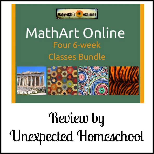 Unexpected Homeschool: Review of MathArt Online from NatureGlo's eScience
