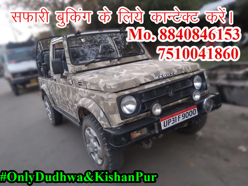 Dudhwa National Park Safari Booking Contact