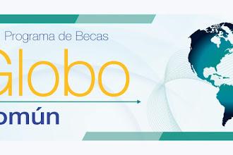 Becas Globo Común/ Hungría