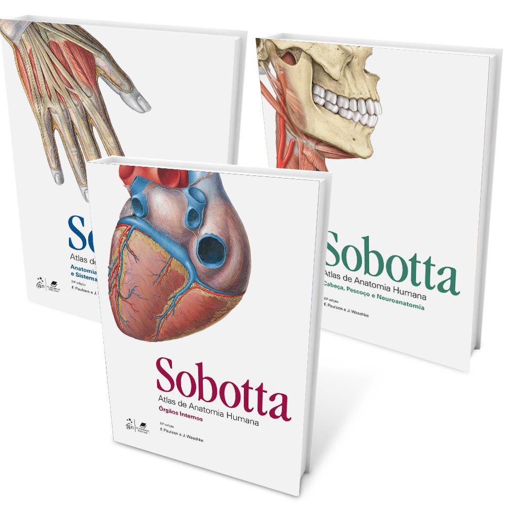 Único Atlas Sobotta De Pdf Anatomía Humana Inspiración - Anatomía de ...