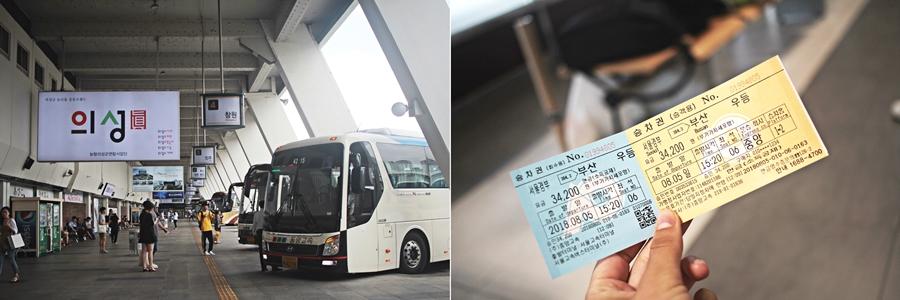 seoul busan bus travel cheap