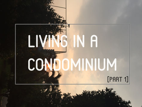 condominium/apartment