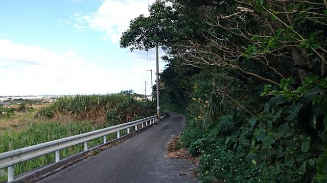 照屋グスク北側の道路の写真