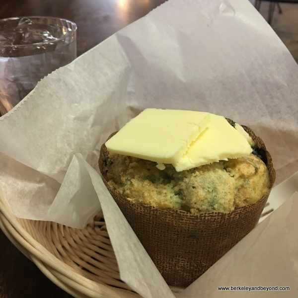blueberry muffin at Angelina's Bakery & Espresso in Lakeport, California