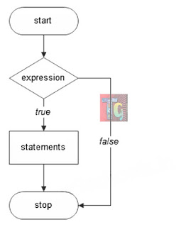 Flowchart of if statement