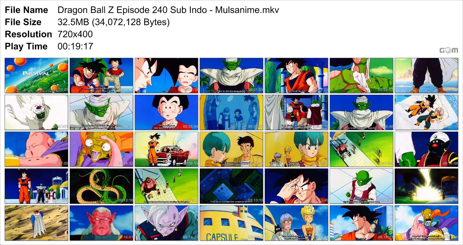 dragon ball z episode 240