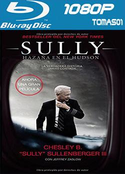 Sully: Hazaña en el Hudson (2016) BRRip 1080p