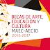 Becas MAEC-AECID 2016 de Arte, Educación y Cultura