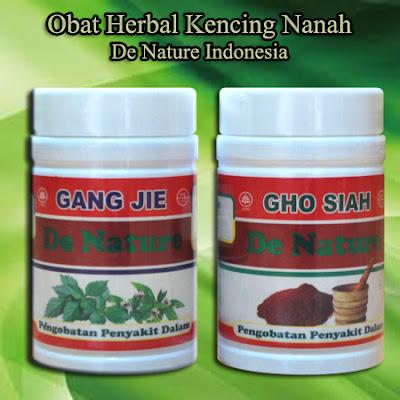 Obat Herbal Kencing Nanah