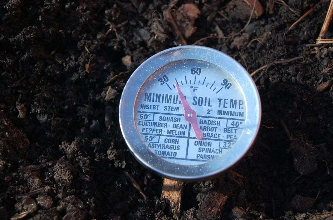Colorado mountain gardener taking your soil s temperature for Soil temperature