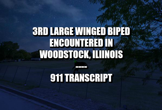 3rd Large Winged Biped Encountered in Woodstock, Illinois - 911 Transcript