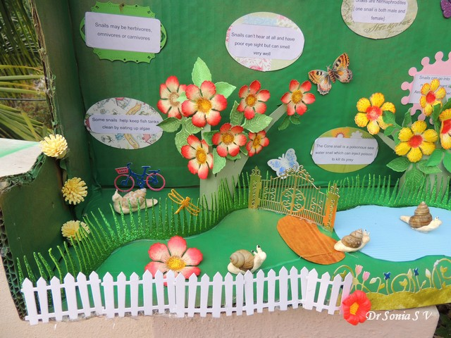 Cards ,Crafts ,Kids Projects: Snails Diorama