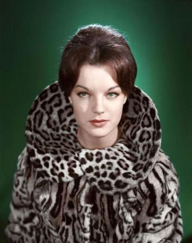 Glamorous Photos of Famous Beauties Taken by Sam Lévin in the 1950s and 1960s ~ Vintage Everyday